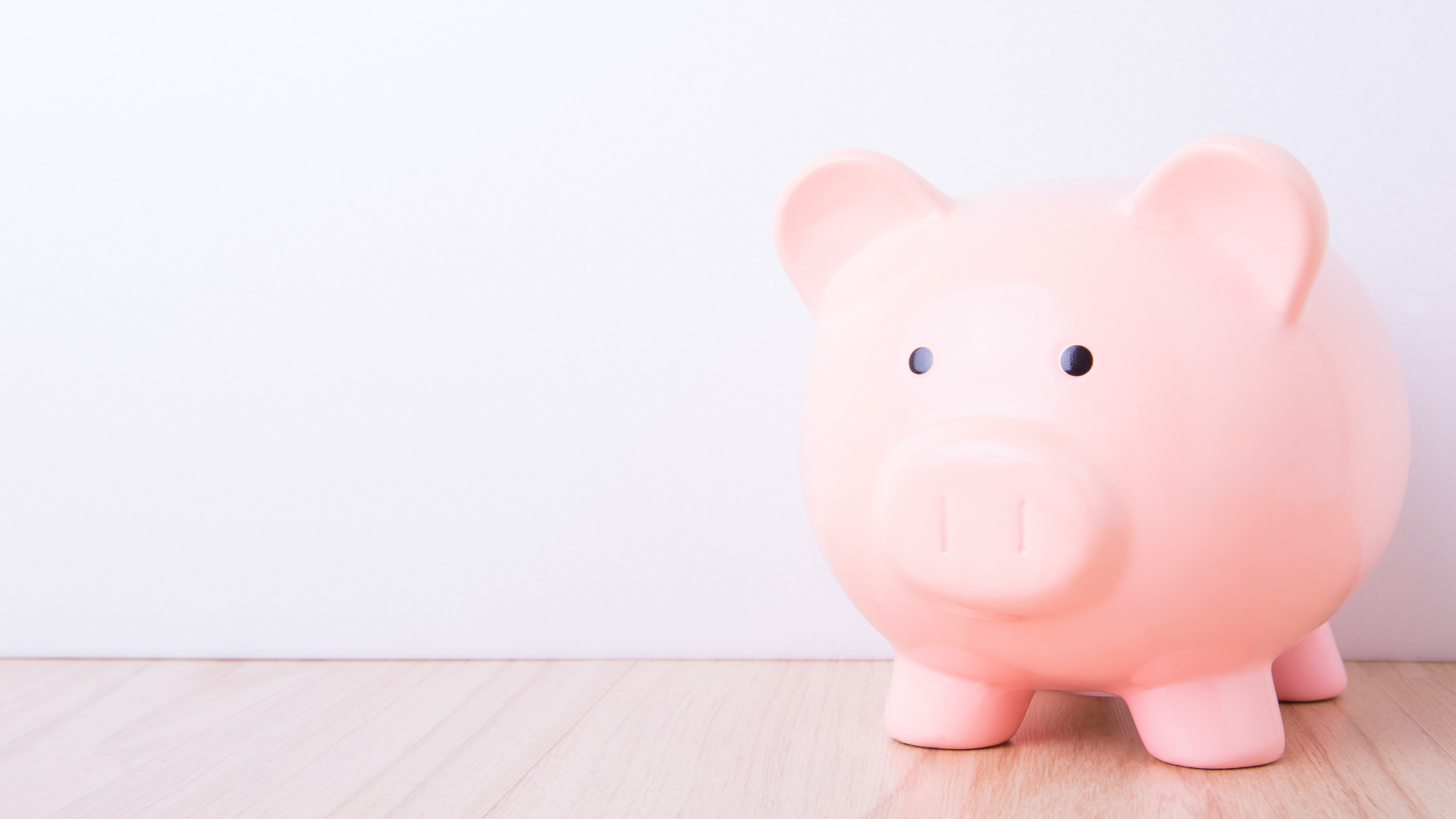 piggy bank how much does a professional voiceover cost?